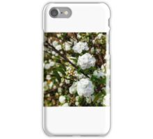 Buds Of May iPhone Case/Skin