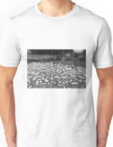 sea of tranquility T-Shirt