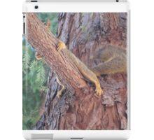 hiding squirrel in the tree iPad Case/Skin