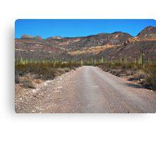 The Sonoran Desert Canvas Print