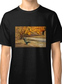 Autumn Benches Classic T-Shirt