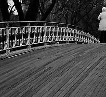 Central Park Bridge by Darren Gantt