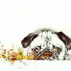 Pug Cuteness by ancapora