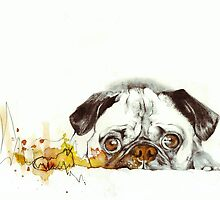 Pug Cuteness by ancapora