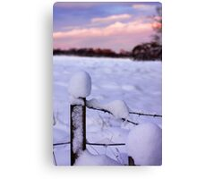 Snowy Fence Post Canvas Print