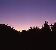 Purple Sunset - Walls of Jerusalem by Damien Hingston
