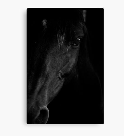 I watched you suffer a dull aching pain Canvas Print