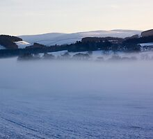 Freezing Fog Over The Tweed by Lynne Morris