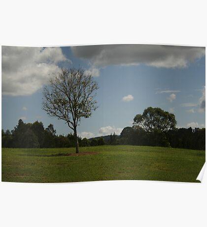 Landscape at Riverdale Park Poster