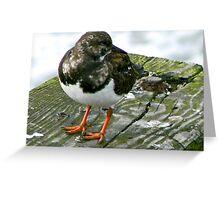 The Bird #1 Greeting Card