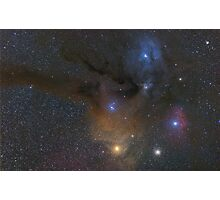 Antares and Rho Ophiuchi region nebulae Photographic Print