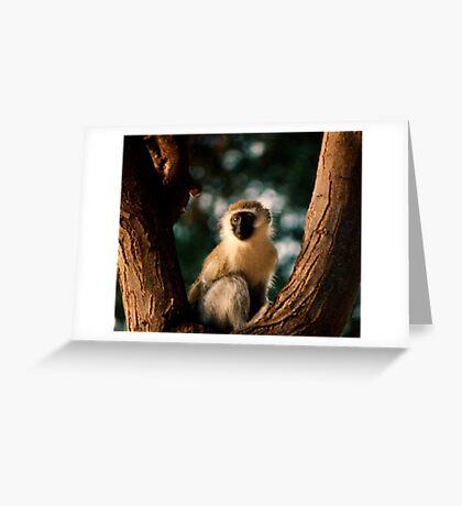 The Spirt Tree Greeting Card