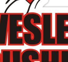 Big Bang Theory - Wesley Crushers Sticker