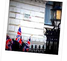 Downing Street by Jackie Barefield