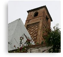 old minaret salares Canvas Print