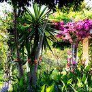 Garden by Ingrid Funk