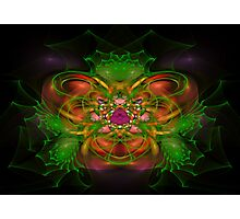 Fractal 41 Photographic Print