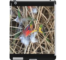 Bright Feathers iPad Case/Skin