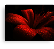 Ruby. Canvas Print