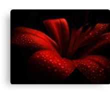 Ruby. Canvas Print