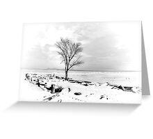 At the Hudson River Greeting Card