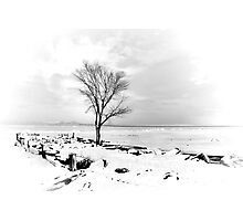 At the Hudson River Photographic Print