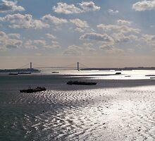 The Hudson River by Dandelion Dilluvio
