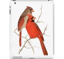 Vintage Cardinals iPad Case/Skin