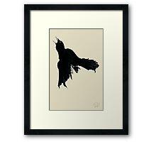 Black Raven Framed Print
