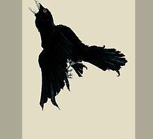 Black Raven by Bigfatbird