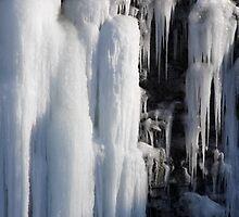 Frozen Falls by Les Wazny