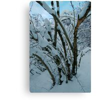 Tree / Snow Canvas Print