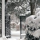 Gate to the Snowy Garden by Monica M. Scanlan