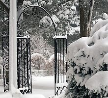 Gate to the Snowy Garden by Monica M. Scanlan