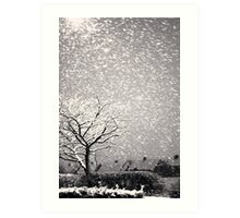 Snowstorm, Newcastle Art Print