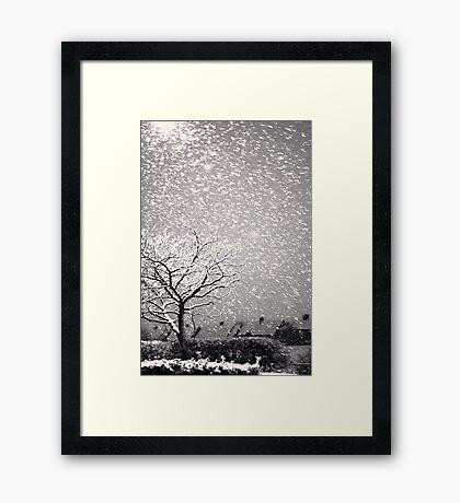 Snowstorm, Newcastle Framed Print