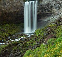 Tamanawas Falls by Bonnie Kirkpatrick