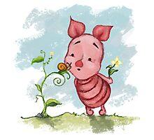 Winnie the Pooh - Baby Piglet Photographic Print