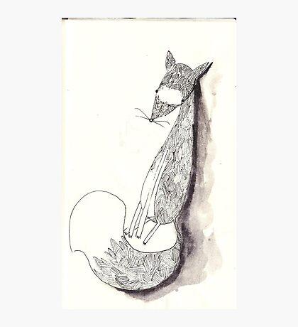 Sly Mr Fox Photographic Print