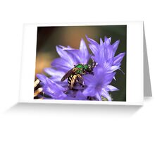 Bee on a Button Greeting Card