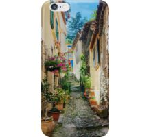 A narrow street in Provence village iPhone Case/Skin