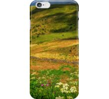 Brecon Beacons iPhone Case/Skin