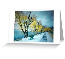 Lakeshore Walkway in Winter Greeting Card