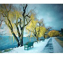 Lakeshore Walkway in Winter Photographic Print