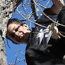 Tree Climber by Deborah  Allen