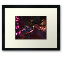 Night in the Sunken Garden (8) Framed Print