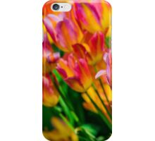 Tulips Enchanting 47 iPhone Case/Skin