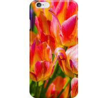 Tulips Enchanting 41 iPhone Case/Skin