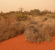 Red Center Walkabout by Bob Hardy