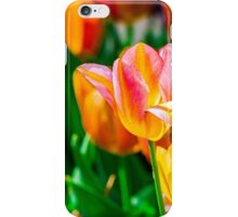 Tulips Enchanting 29 iPhone Case/Skin